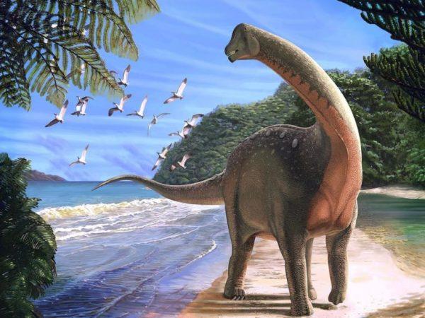 Mơ thấy khủng long đánh con gì?