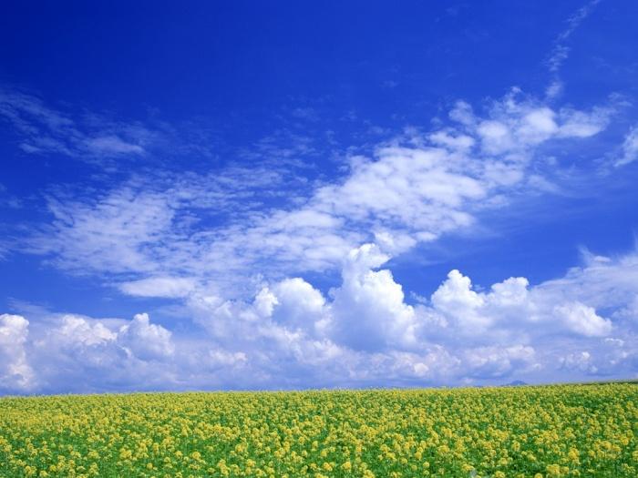 Mơ thấy trời xanh