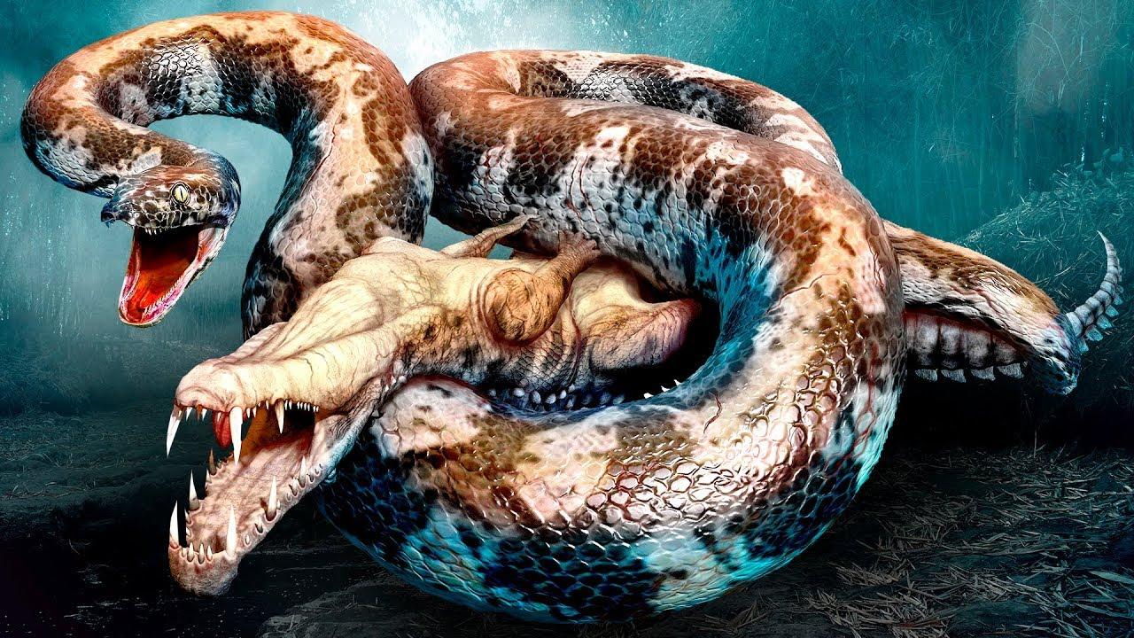 Những điềm báo bí ẩn khi mơ thấy con rắn khổng lồ